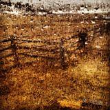 Boxwood - Mix #10 (March 2012)