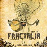 Merry:) DJ Set @ Fractalia OpenAir 2015