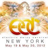Avicii @ EDC NY 05.19.2012