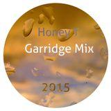 Garridge Mix 2015
