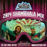 2014 Shambhala Mix