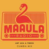 Ant aka A-Tweed (Jungla EST) - Cumbia mix x Radio Maaula (France) - 25/01/19
