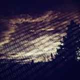 DataTransitions 70 # Herbst