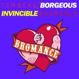 Tim Berg vs Borgeous - Invincible Bromance (Adrian Kwiatkowski Mashup)