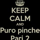 "D.j. X-tasy Presenta: ""Puro Pinche Pari 2"""