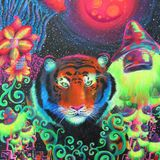 PsyBreak Hallucinations - PsyAmb 48