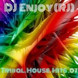 DJ Enjoy (RJ) - Tribal House Hits (07 2016)