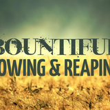 AM: Bountiful Sowing and Reaping - Audio