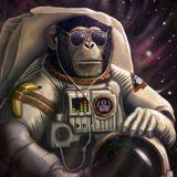 disco space monkey part 1