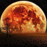 Amber Moon: 20 min hw-only liveset