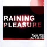 minitape #6: from the Raining Pleasure