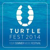 || DJ Alexunder - DJ contest for Turtle fest 2014 ||