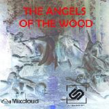 Angels of the wood
