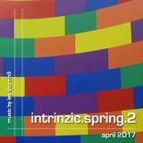 2017 intrinzic.spring.2