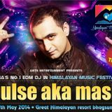 HIMALAYAN MUSIC FESTIVAL, (MC-LEODGANJ BHAGSUNAG  )2014 (MIXED BY PULSE AKA MASH)