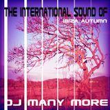 The International Sound of DJ Many More Ibiza Autumn 2014