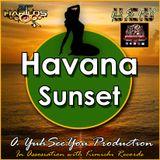 YB EXCITEMENT REGGAE RADIO - sunscreen riddim meets havana sunset riddim DJ FADDA B new 4 september