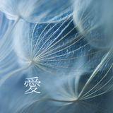 Mudra podcast / Stanislav Afro - 愛 [MM46]