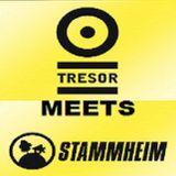 Pierre @ Aciiiid! Stammheim Meets Tresor - Tresor Berlin - 04.04.2008