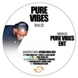 Pure Vibes Vol.12
