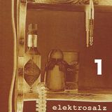 DJ ELEKTROSALZ - the LSFestival set 2012 part one