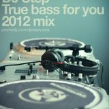 DJ Step – True bass for you 2012 mix