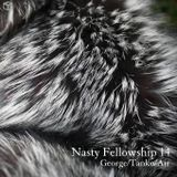 NASTY FELLOWSHIP Vol.14 / Mixed by DJ GEORGE , TANKO & AIR