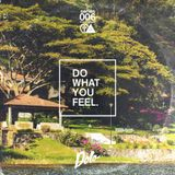 Acrylick x Dolo - Do What You Feel 006