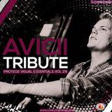 Avicii Tribute PVE Vol 29 - DJ Protege (audio)