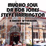 Mucho Soul, Dr Bob Jones, Steve Harrington  Sunday Afternoon Jazz & Soul Session Brussels 15.03.15