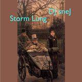 Storm Lung by DJ sneJ 6/26/99