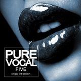 Pure Vocal 5: A Liquid DnB Session