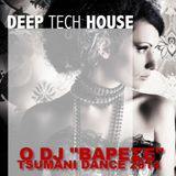 TSUMANI DANCE HITS - minimix 2014 vol 3