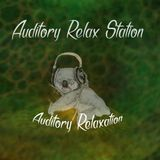 Auditory Relax Station #23: Lost Tribe with Ori Gayer