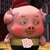 ●大日子●豬你發大財●新年快樂●PRIVATE PIG YEAR COUNTDOWN NONSTOP REMIX 2K19 BY DEEJAY SLT