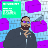 Fengir's Key 22 - datafruits.fm