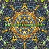 I.Fields-The fourth dimension of chillers