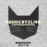 SUSHICATZ LIVE @ COFFEE DEEP SESSION VOL 1 (BERACA CAFE TEGUCIGALPA)