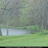 Spring Rain / Dj Herb Martin