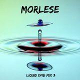 MORLESE-liquid dnb mix #3