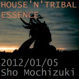 HOUSE'N'TRIBAL ESSENCE