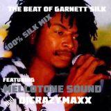 The Best of Garnett Silk Mix.mp3