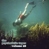 The Psychedelic Tapes - Volume 28