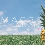 [31.03.2016] MacroMusic #11 - Dj Macro - Radio RSC