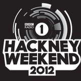 Flux Pavilion and Doctor P - Live @ Hackney Marshes, UK - 23.06.2012