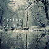 Castor - Le mix réconfortant