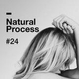 Natural Process #24