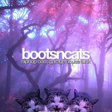 Bootsncats #018 - Padawan