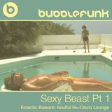Sexy Beast Part 1 | Eclectic Balearic Soulful Nu-Disco Lounge