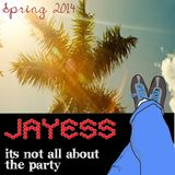 Jayess It aint all about the party Spring/summer 2014